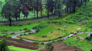 Top 10 Places to visit India with your Lover-ooty