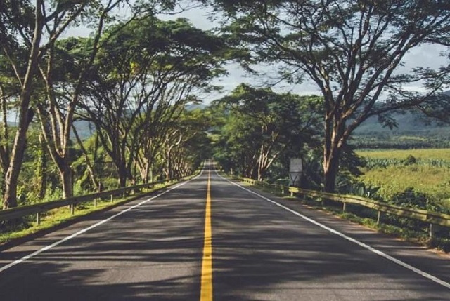 10-Countries-Where-You-Can-Drive-with-an-Indian-Driving-License-Mauritius